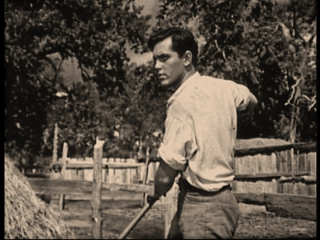 Three Young Texans  Jeffrey Hunter