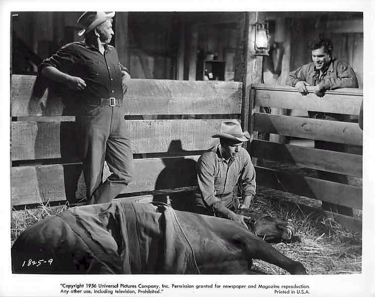 Gun for a Coward  Jeffrey Hunter  Chill Wills   Fred MacMurray